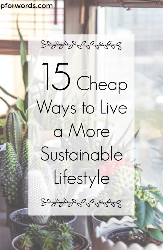 You don't need to spend an arm and a leg to live a sustainable lifestyle. Here are 15 tips to do so that are free or very cheap!
