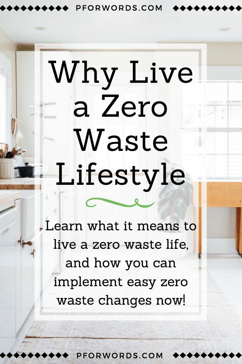A brief introduction to what it means to live a zero waste lifestyle. Learn more about the reasons why you should go zero waste, and how to implement a few easy changes to less your footprint now!