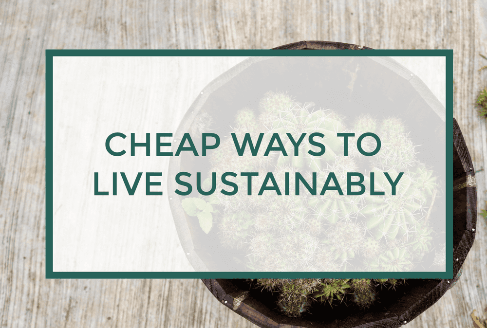 Inexpensive Ways to Live a more Sustainable Lifestyle